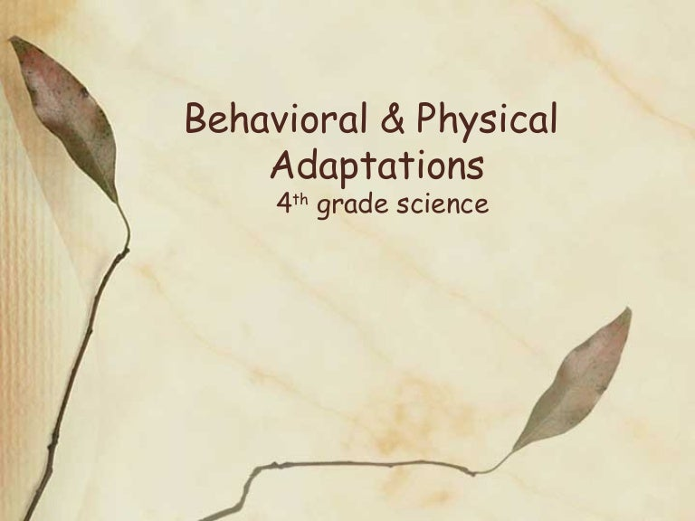 Behavioral & physical adaptations
