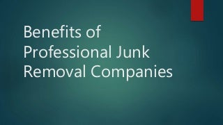 Benefits of professional junk removal companies