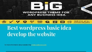 Best wordpress basic idea develop the website