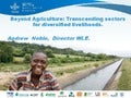 Beyond agriculture: Transcending sectors for diversified livelihoods