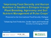 Sustainable Food Production:  Improving Food Security and Human Nutrition in Southern Ethiopia through Plant Breeding, Agronomy and Soil Nutrient Management of Pulse Crops