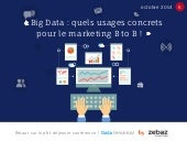 Big data quels usages concrets pour le marketing BtoB