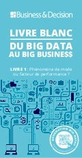 "Livre blanc ""Du Big Data au Big Business"""