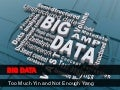 Big data - too much yin and not enough yang