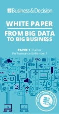 "White paper ""From Big Data to Big Busine$$"""