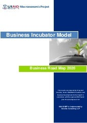 Tech Incubator Business Model