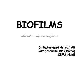 Term papers biofilms   Research paper Writing Service Robert Tisserand Figure