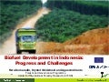 Biofuel development in Indonesia: progress and challenges
