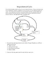 Printables Biogeochemical Cycles Worksheet biogeochemical cycles