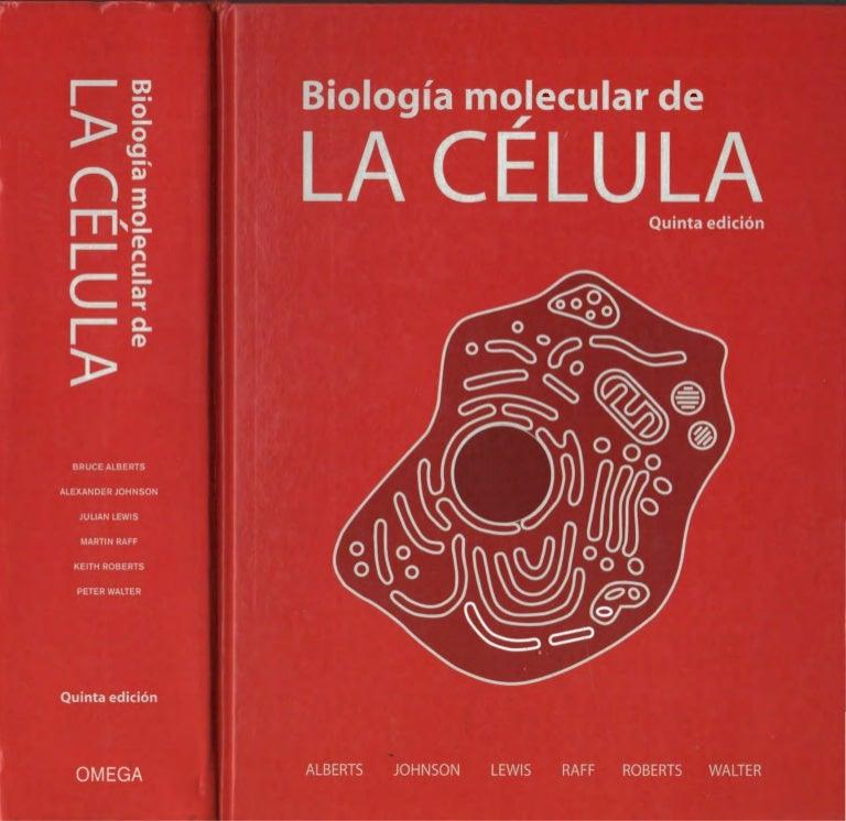 libro de bruce lee pdf español