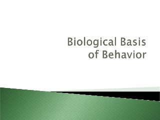 Biological basis of behavior (new)
