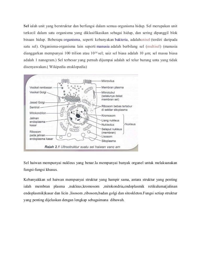 Biologi Kumpulan Anwr