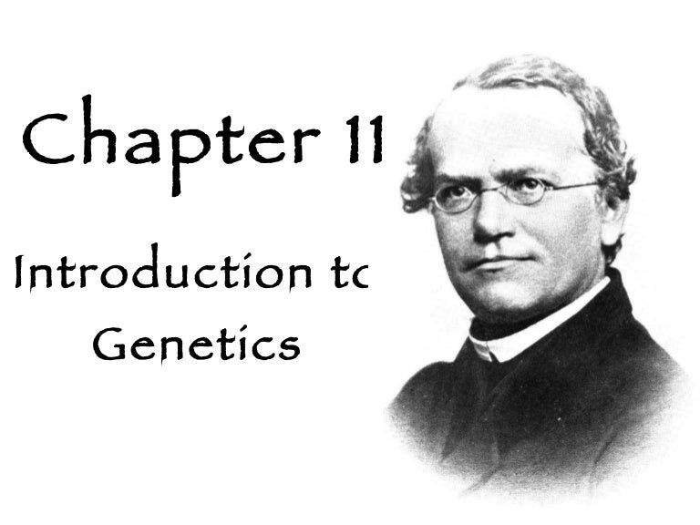 Bestseller: Biology Chapter 11 Introduction To Genetics ...