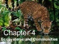 Biology - Chp 4 - Ecosystems And Communities - PowerPoint