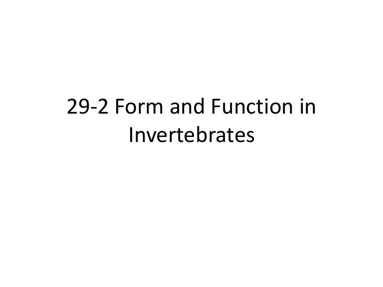 Biology 29 2 form and function in invertebrates