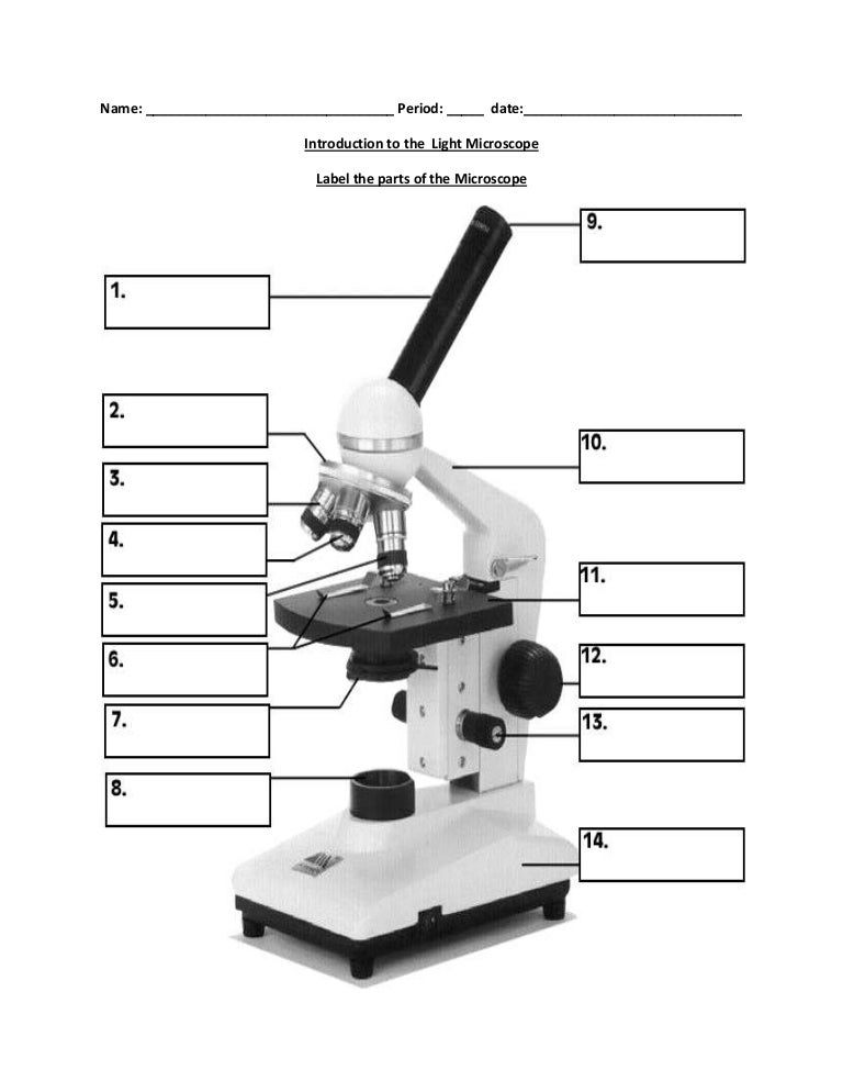 Label The Microscope Worksheet Sharebrowse – Parts of a Microscope Worksheet