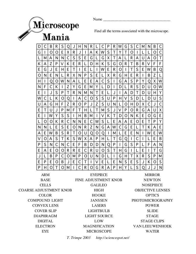 Biology micropuzzle – Microscope Mania Worksheet
