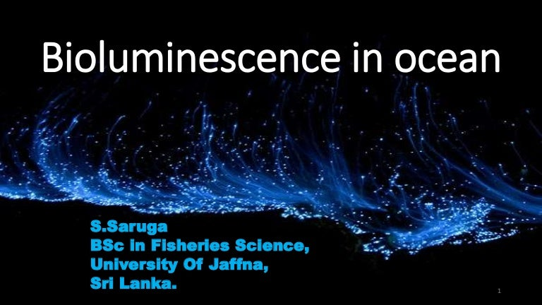 Basic Bioluminescence (PDF Download Available)