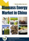 Biomass energy market in china