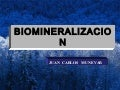 Biomineralizacion dental