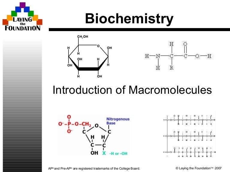 biomolecules 110916000011 phpapp02 thumbnail 4jpgcb1316132183