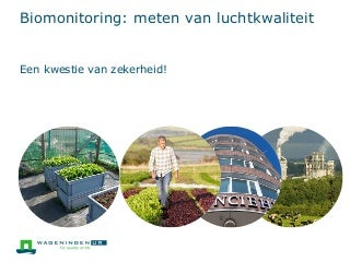 Biomonitoring: meten van luchtkwaliteit