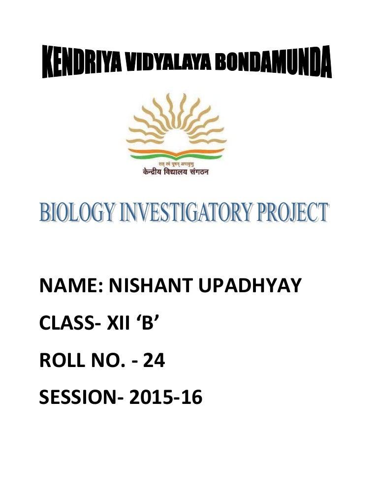 investigatory projects Investigatory project thursday, april 2, 2009.