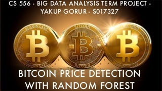 Bitcoin Price Detection with Pyspark presentation