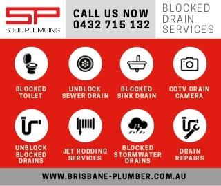 Brisbane blocked drain services infographic