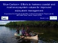 Blue Carbon+: Efforts to harness coastal and marine ecosystem values for improved ecosystem management