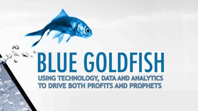Bluegoldfishslidesharev4 151201153535 lva1 app6891 thumbnail