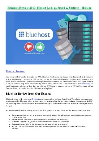 Bluehost Review 2019: Honest Look at Speed & Uptime - Hosting