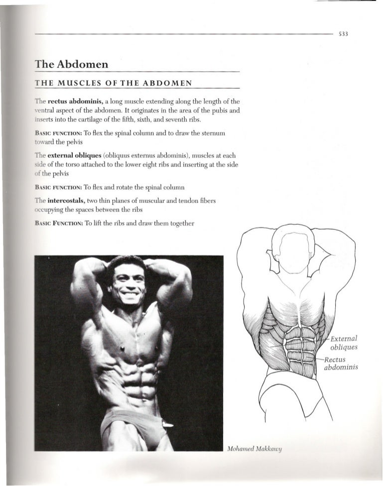 Book 3 9 5 The Abs