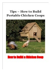 Tips - How to Build Portable Chicken Coops