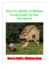 How To Build A Chicken Coop Easily In One Weekend