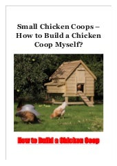 Small Chicken Coops - How to Build a Chicken Coop Myself?