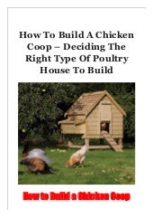 How To Build A Chicken Coop - Deciding The Right Type Of Poultry House To Build