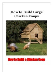 How to Build Large Chicken Coops