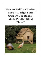 How to Build a Chicken Coop - Design Your Own Or Use Ready-Made Poultry Shed Plans?
