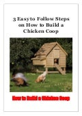 3 Easy to Follow Steps on How to Build a Chicken Coop