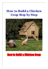 How to Build a Chicken Coop Step by Step
