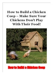 How to Build a Chicken Coop - Make Sure Your Chickens Don't Play With Their Food!