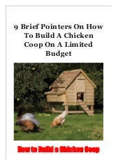 9 Brief Pointers On How To Build A Chicken Coop On A Limited Budget