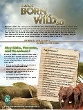 Born To Be Wild 3D - Educational Poster