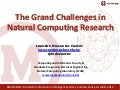 2012: The Grand Challenges in Natural Computing Research