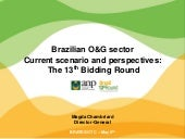 Brazilian O&G sector Current scenario and perspectives: The 13th Bidding Round
