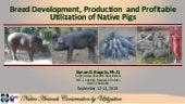Breed development, production and commecial utilization of native pigs
