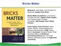 Bricks Matter: Meet the Supply Chain Pioneers - webinar - 17 JAN 2013