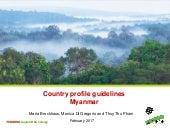 Country profile guidelines: Myanmar