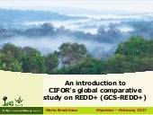 An introduction to CIFOR's global comparative study on REDD+ (GCS-REDD+)